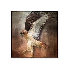 "Red Tail Hawk in Vintage Li Square Sticker 3"" x 3"""