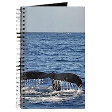 Maui Whale Tail Journal