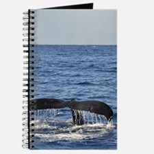 Maui Whale Tail Journal