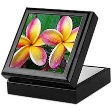 Maui Plumeria Tropical Flower Keepsake Box