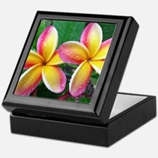 Maui Plumeria Tropical Flower Keepsake Box