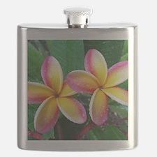 Maui Plumeria Tropical Flower Flask