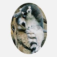 Cute Lemur Oval Ornament