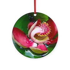 Lotus Ornament (Round)