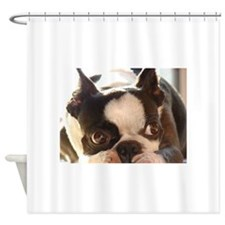 Adorable Jewels Shower Curtain