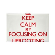 Keep Calm by focusing on Uprooting Magnets