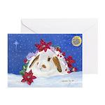 Christmas Rabbit Greeting Cards (pk Of 20)
