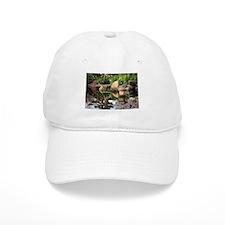 Japanese garden pond 2 Baseball Cap