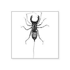 """Funny Scorpion Square Sticker 3"""" x 3"""""""