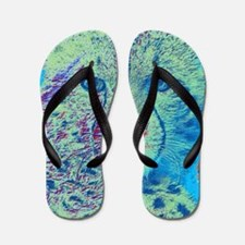 Cheetah Colorful Version Flip Flops