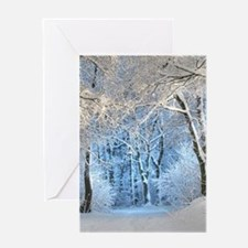 Another Winter Wonderland Greeting Cards