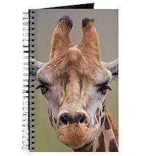 I Am Beautiful Journal