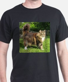 norwegian forest cat full tabby T-Shirt