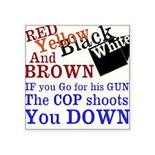 Ferguson Missouri - The Truth Sticker