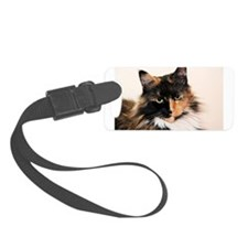 Maine Coon Cat Abby Luggage Tag