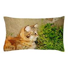 Maine Coon Cat Alexandra Pillow Case