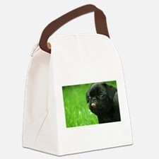 Black Pug Canvas Lunch Bag