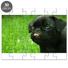 Black Pug Puzzle