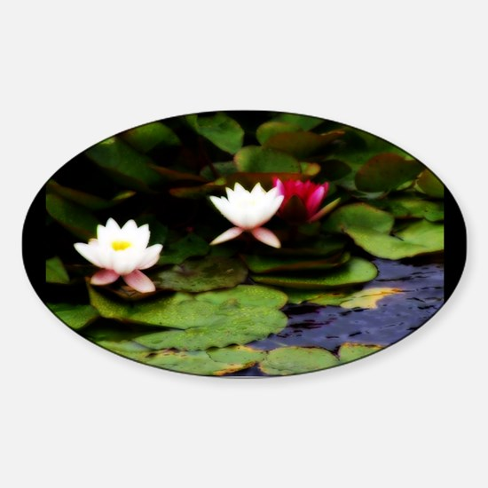 P8240186 normandy flowers Decal