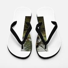 BohemianPeasant Flip Flops