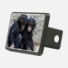 Chimpanzee002 Hitch Cover