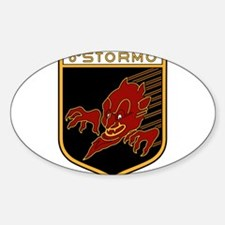 6o Stormo Decal