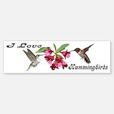 Hummingbird Pair Bumper Bumper Bumper Sticker