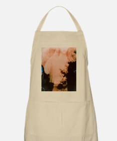 Apparition Apron