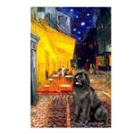 Cafe & Newfoundland Postcards (Package of 8)