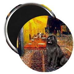 Cafe & Newfoundland Magnet
