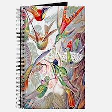 Tropical Hummingbirds Journal
