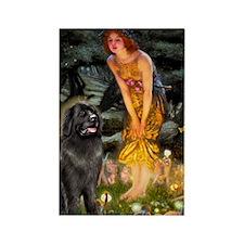 Fairies & Newfoundland Rectangle Magnet