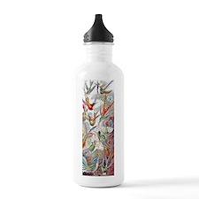 Tropical Hummingbirds Water Bottle