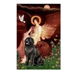 Angel & Newfoundland Postcards (Package of 8)