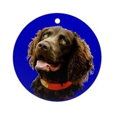 Boykin Spaniel Photo Ornament (Round)