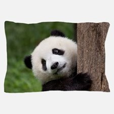 Panda Bear Cub Pillow Case
