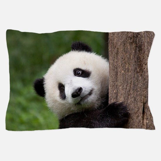 Panda Bear Cub Pillow Case