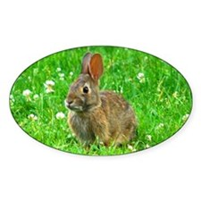 bunny-clover_j.jpg Decal