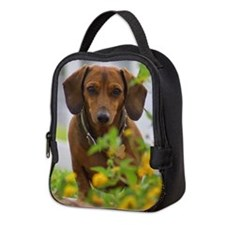 Mini Red Dachshund Neoprene Lunch Bag