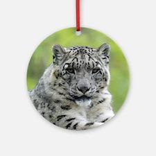 Leopard010 Ornament (Round)