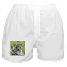 Leopard010 Boxer Shorts