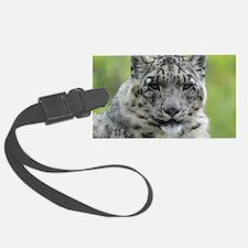 Leopard010 Luggage Tag