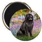 Garden / Newfoundland Magnet