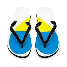 Ukrainian Flag Heart Flip Flops