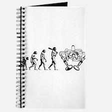 Valve evolutuon Journal