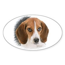 Beagle Close Up Sticker (oval 10 Pk)