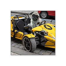 "Sexy Racing Pug Square Sticker 3"" x 3"""