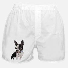 Poser Boxer Shorts