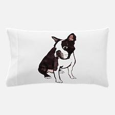 cos2.tif Pillow Case