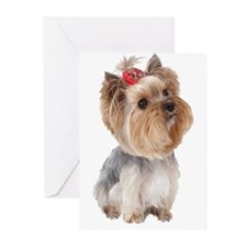 Cute Yorkie Greeting Cards (Pk of 20)